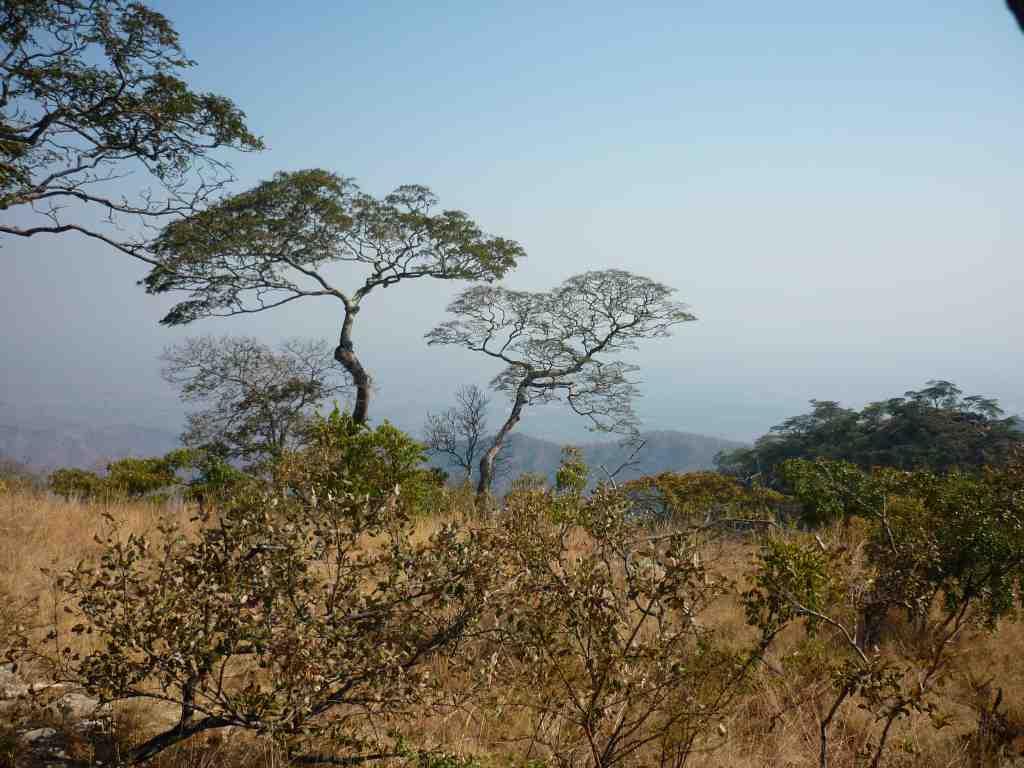 Cahora Bassa Mocambique Mavuradonha Wilderness