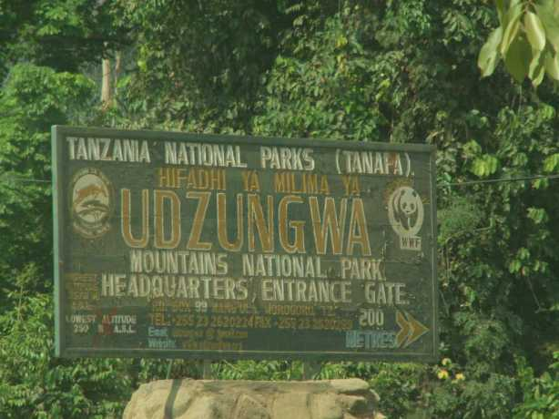 Udzungwa Mountains