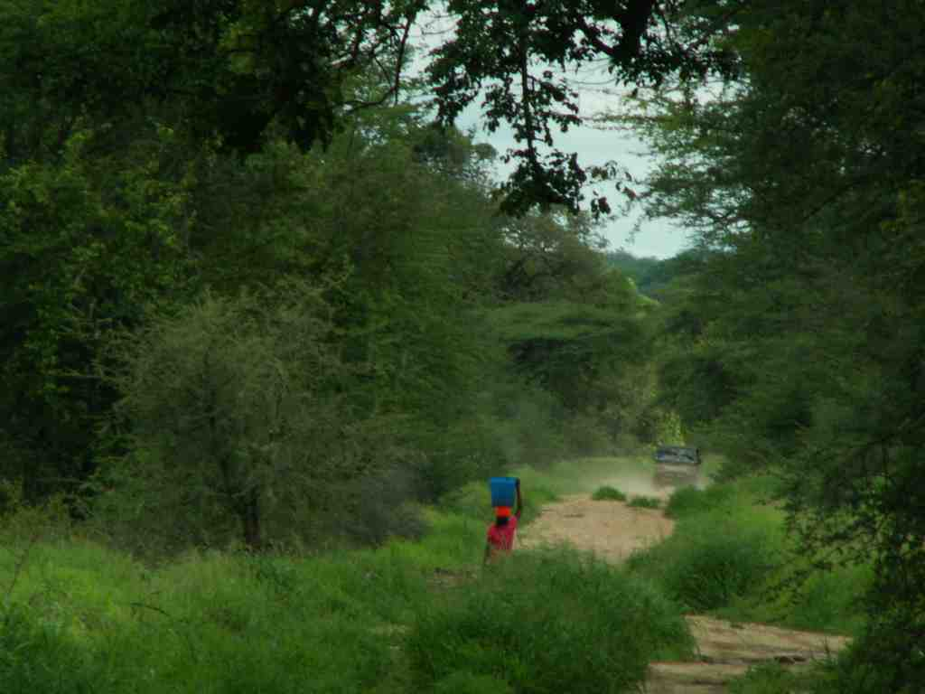 Kanyemba Road