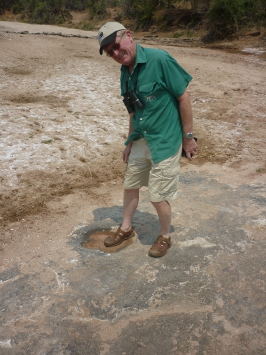 Dinosaur footprint with AJS
