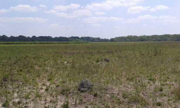 Zambezi Delta